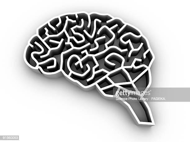illustrazioni stock, clip art, cartoni animati e icone di tendenza di brain complexity - intrico