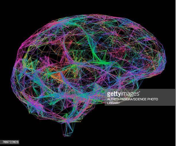 brain, neural network, illustration - artificial neural network stock illustrations