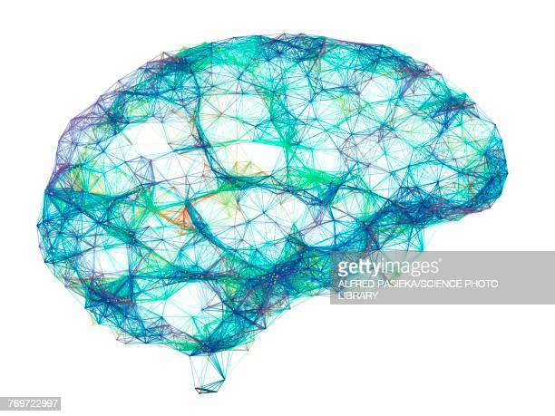 brain, neural network, illustration - brain stock illustrations