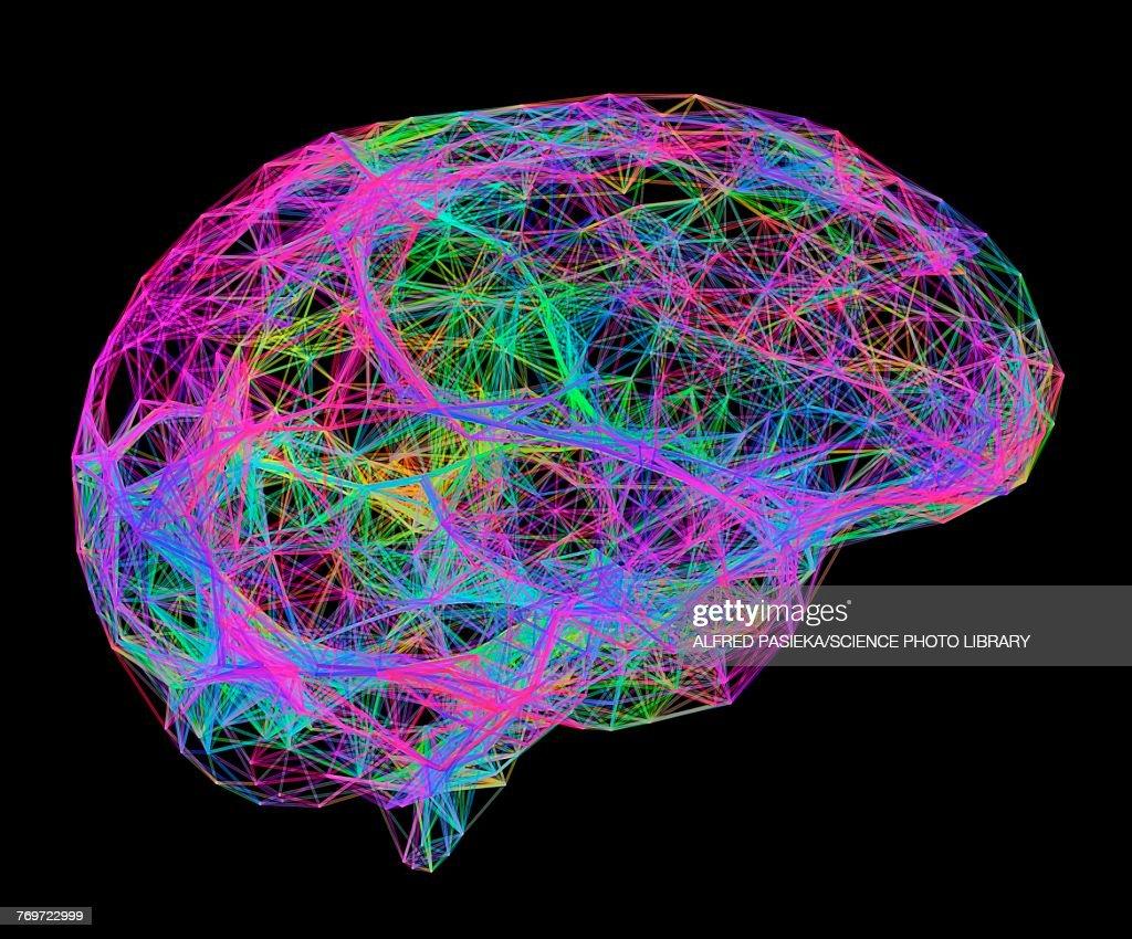 Brain, neural network, illustration : stock illustration
