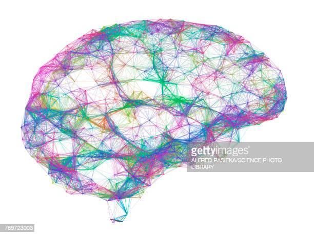 ilustrações, clipart, desenhos animados e ícones de brain, neural network, illustration - inteligência