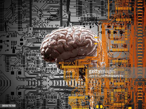Brain under layers of circuit board,