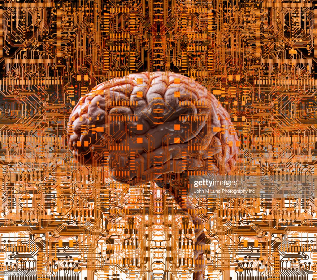 Brain Under Layers Of Circuit Boards Stock Illustration Getty Images Pictures