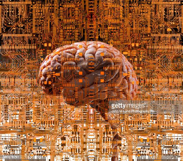 brain under layers of circuit boards - artificial intelligence stock illustrations