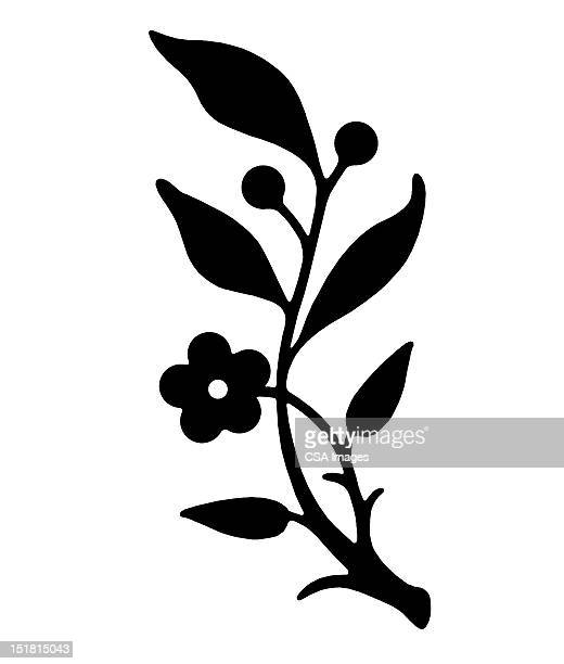 branch with flower and leaves - branch stock illustrations