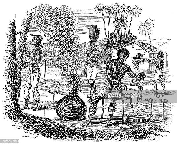 brazil slaves working on caoutchouc plantation harvesting rubber - rubber stock illustrations, clip art, cartoons, & icons