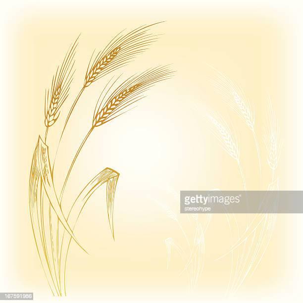 bread - barley stock illustrations, clip art, cartoons, & icons