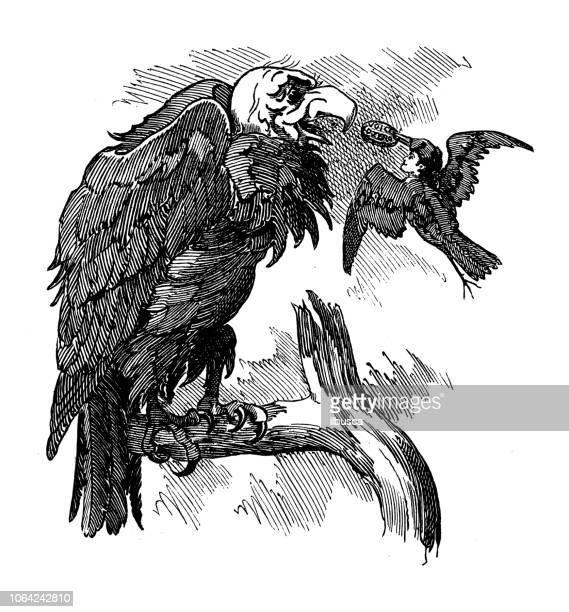 british london satire caricatures comics cartoon illustrations: feeding vulture - bird of prey stock illustrations, clip art, cartoons, & icons