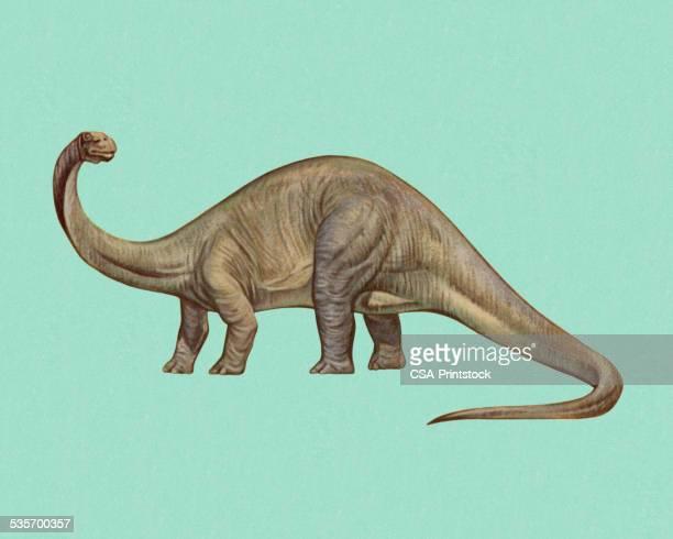 ilustraciones, imágenes clip art, dibujos animados e iconos de stock de brontosaurus - animal extinto