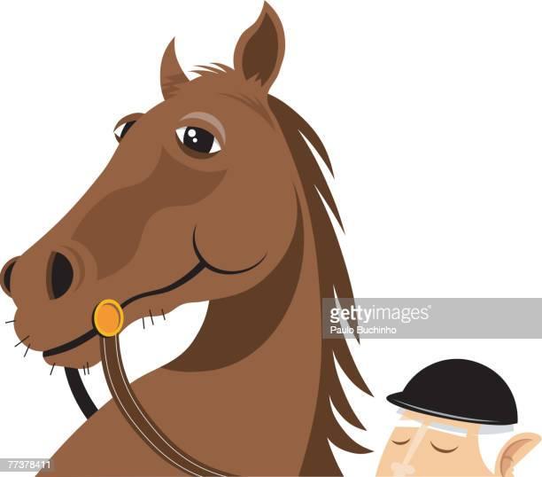 ilustrações de stock, clip art, desenhos animados e ícones de a brown horse with its rider - buchinho