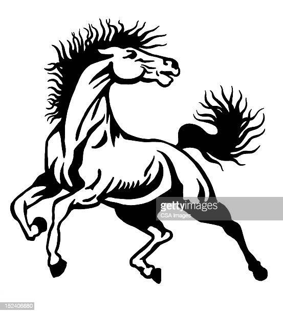 ilustrações, clipart, desenhos animados e ícones de cavalos cavalo - animal mane