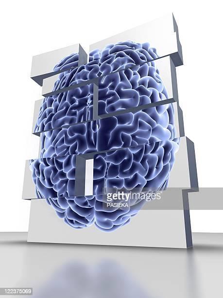 stockillustraties, clipart, cartoons en iconen met building blocks with brain, artwork - ziekte van alzheimer