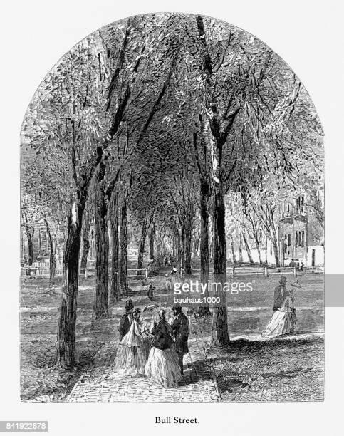 ilustraciones, imágenes clip art, dibujos animados e iconos de stock de toro calle, savannah, georgia, estados unidos, grabado victoriano americano, 1872 - savannah