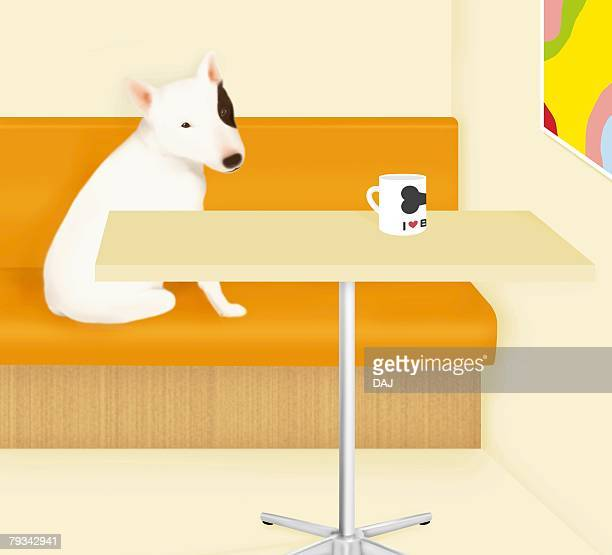 Bull Terrier sitting on couch, side view