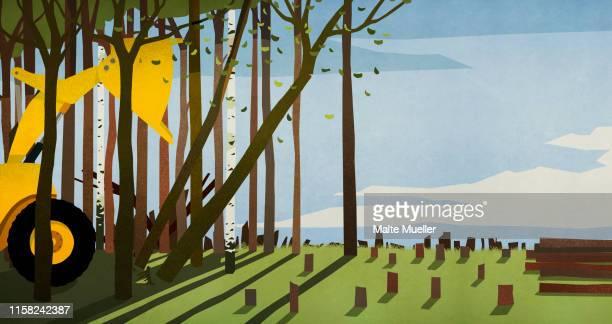 ilustrações de stock, clip art, desenhos animados e ícones de bulldozer taking down trees, deforestation - desmatamento