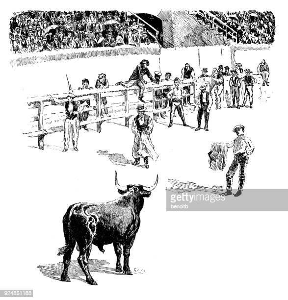 ilustraciones, imágenes clip art, dibujos animados e iconos de stock de corrida de toros en la plaza de toros en la provenza - toreo