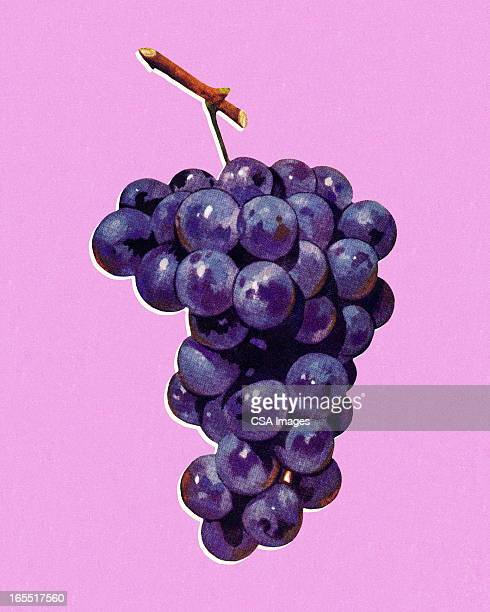 bunch of grapes - grape stock illustrations, clip art, cartoons, & icons