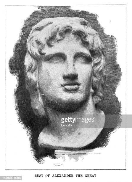bust of alexander the great - alexander the great stock illustrations