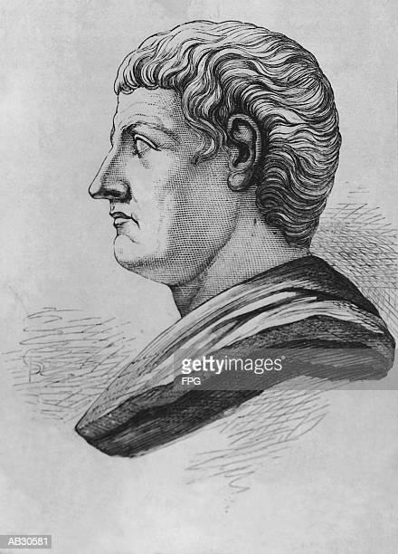 bust of aristotle - philosopher stock illustrations