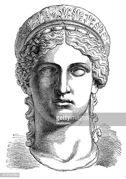 bildbanksillustrationer, clip art samt tecknat material och ikoner med bust of greek goddess juno or hera - grekisk gudinna