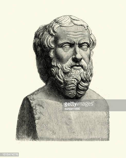 bust of herodotus, the father of history - herodotus stock illustrations