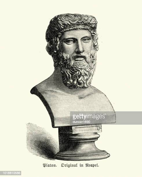 bust of plato - classical greek style stock illustrations