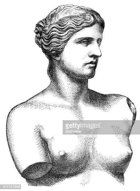 Busto Vênus de Milo Afrodite ilustração