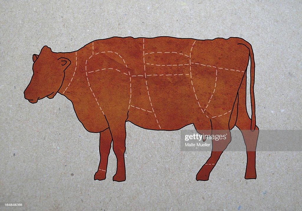butchers diagram of a cow illustration id164848266?b=1&k=6&m=164848266&s=612x612&w=0&h=sxr4 9THCFpb70PHW6l6hH7HKJCI1iSU2enGQLdGlJo= a butcher's diagram of a cow photos com