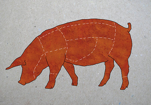 A butcher's diagram of a pig