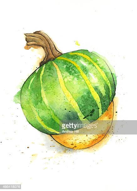 Buttercup Squash Painted in Watercolor