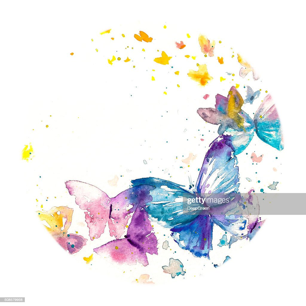 Butterfly : Stockillustraties
