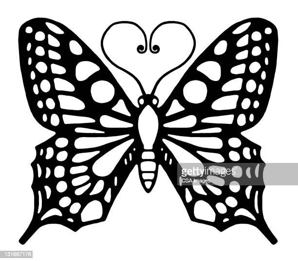 Butterfly With Heart Antennae