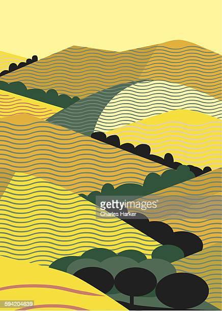 California Yellow Hills Graphic Illustration