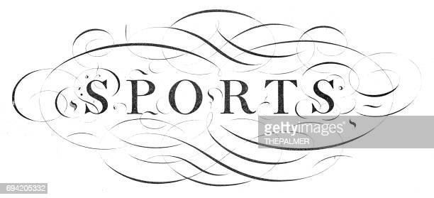 calligraphy word sports - embellishment stock illustrations