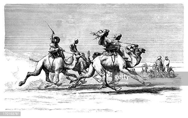 camel racing in egypt - tunisia stock illustrations, clip art, cartoons, & icons