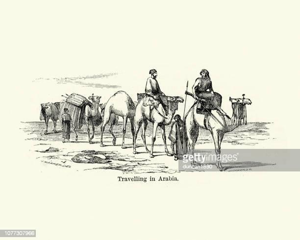 19 世紀、アラビアを旅するラクダの列車 - 乾燥気候点のイラスト素材/クリップアート素材/マンガ素材/アイコン素材