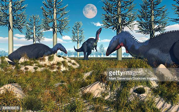 camptosaurus nesting ground set during the jurassic period. - plant attribute stock illustrations, clip art, cartoons, & icons