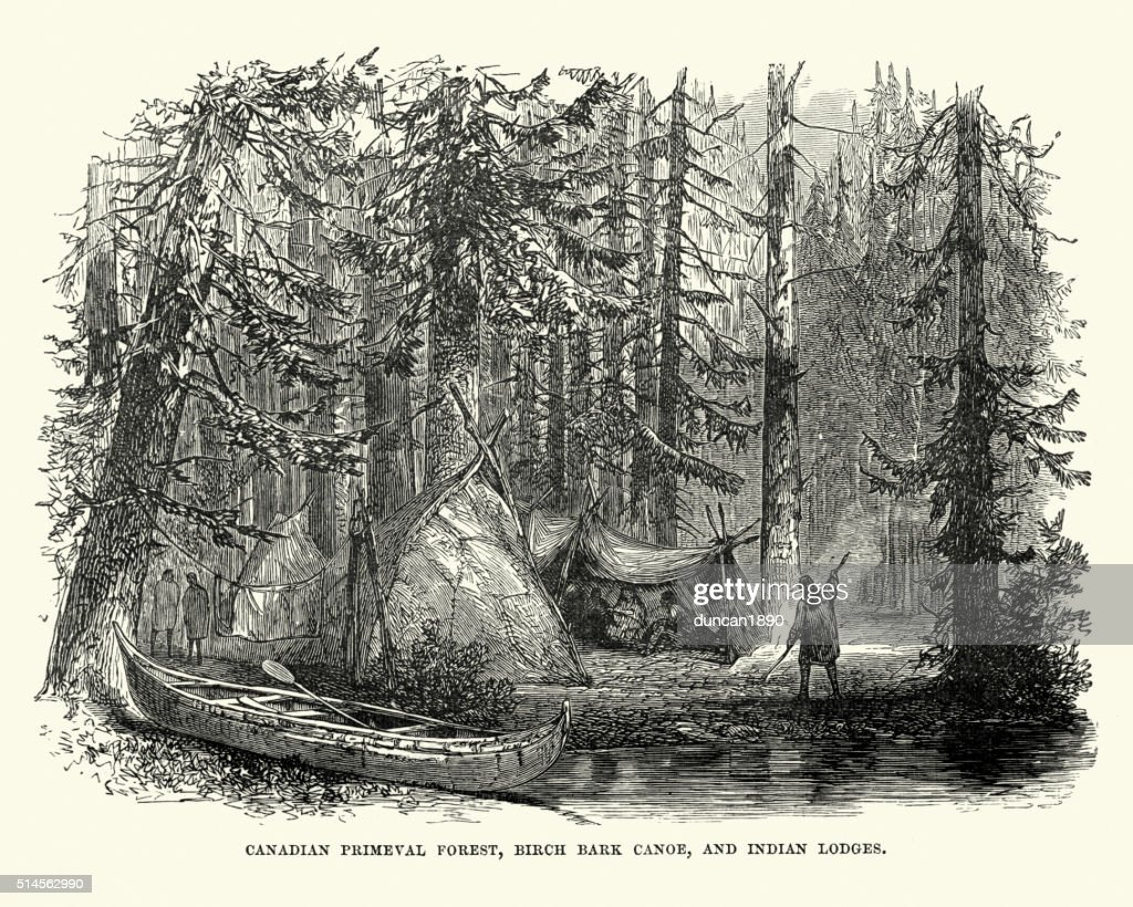 Canadian native americcans in the primeval forest : Stock Illustration