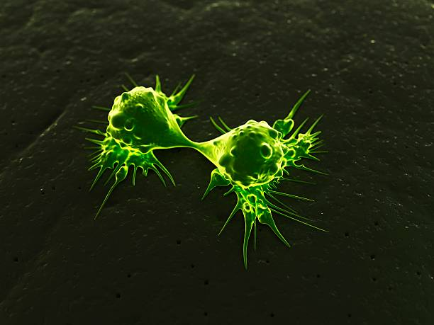 Cancer Cells Dividing, Artwork Wall Art