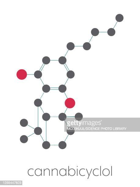 cannabicyclol cannabinoid molecule, illustration - chemical formula stock illustrations