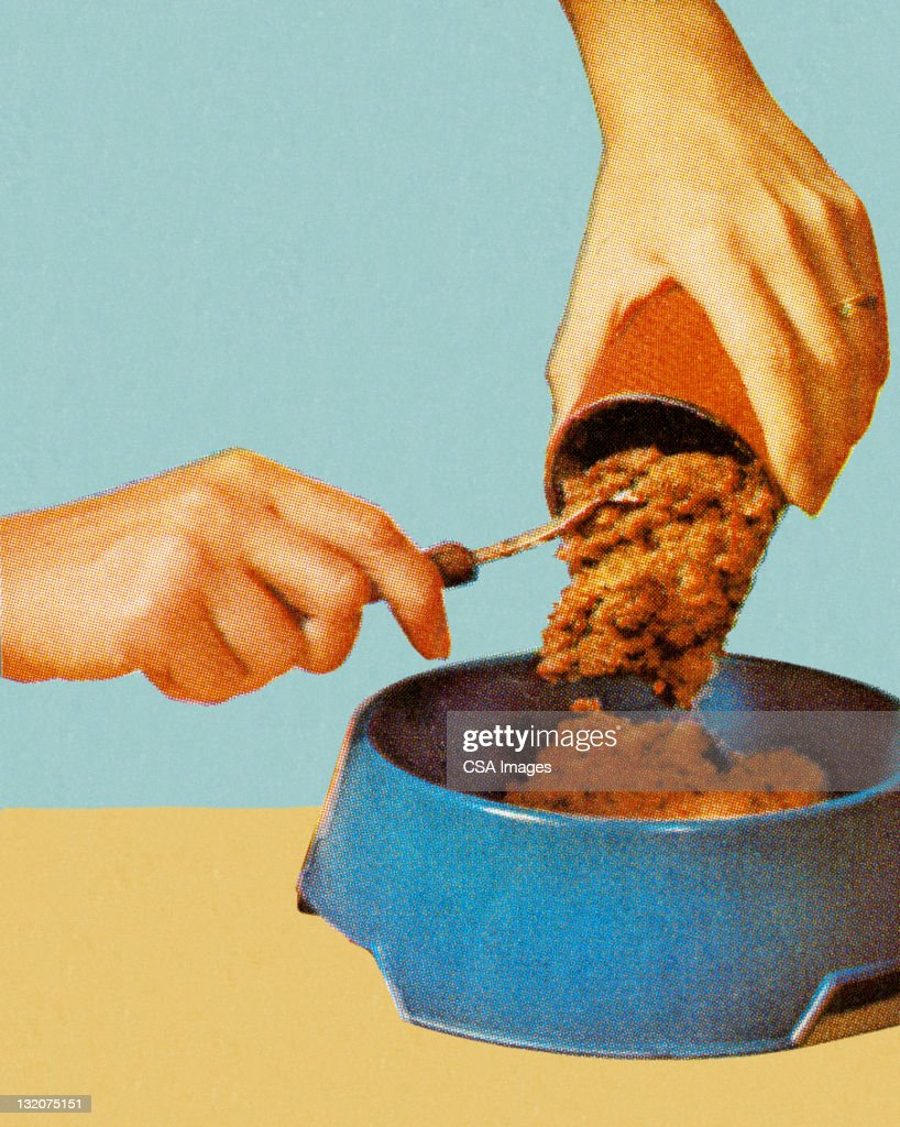 Canned Dog Food Going Into Bowl : stock illustration