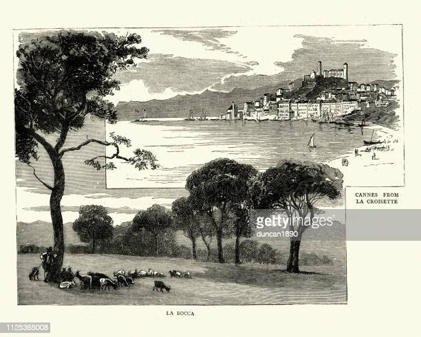 cannes from la croisette, france, 19th century engraving, victorian - cannes stock illustrations, clip art, cartoons, & icons