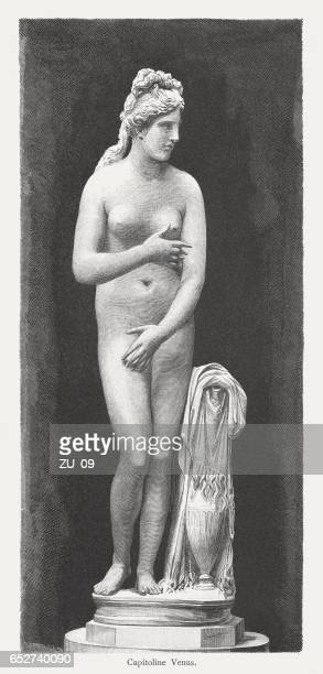 Capitoline Venus, ancient sculpture, wood engraving, published in 1884