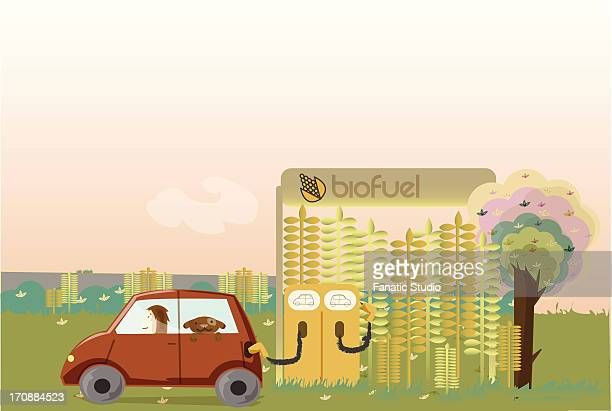 car being refueled at biofuel pump - biodiesel stock illustrations, clip art, cartoons, & icons