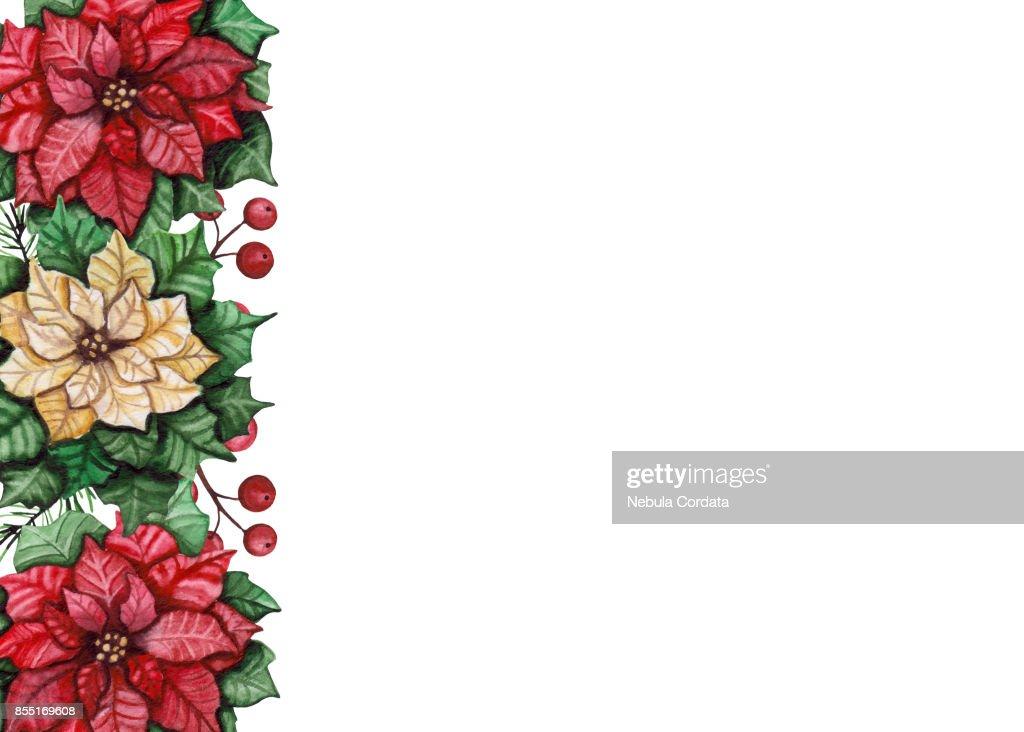 Karte Mit Aquarell Rote Und Gelbe Weihnachtsstern Und Beeren Stock ...