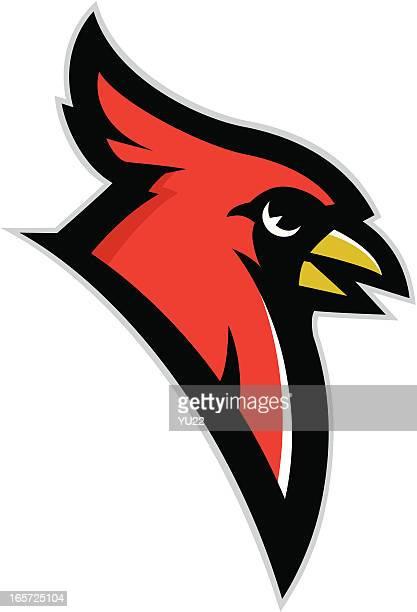 cardinal head mascot - cardinal bird stock illustrations, clip art, cartoons, & icons
