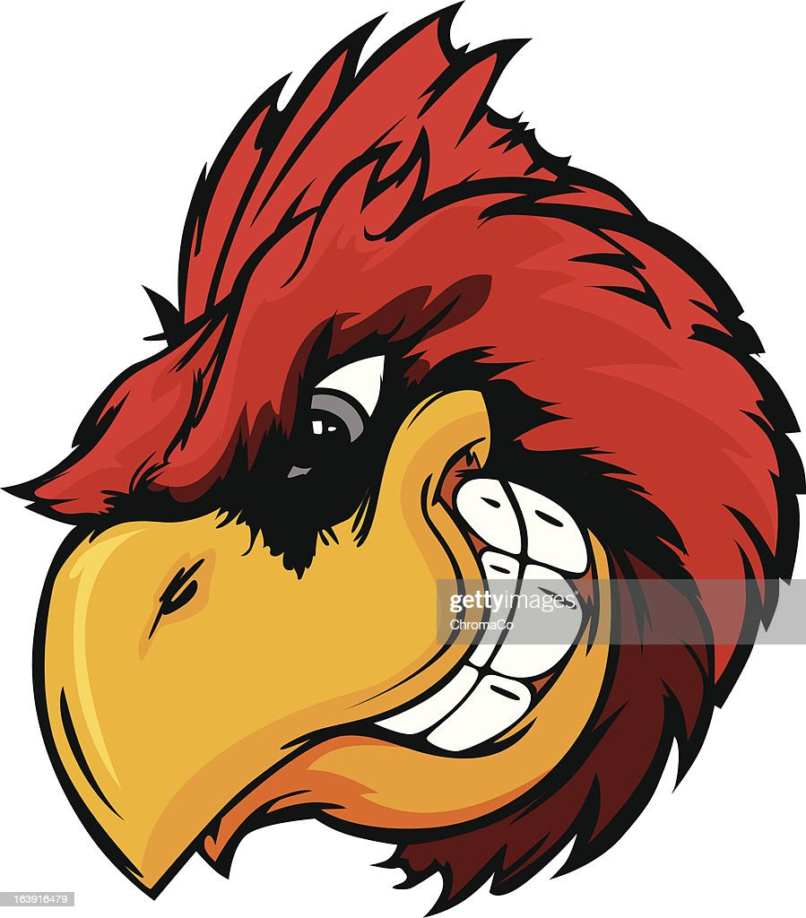 Cardinal or Red Bird Head Vector Cartoon