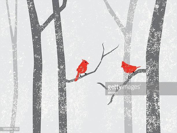 cardinals in snow storm - cardinal bird stock illustrations, clip art, cartoons, & icons