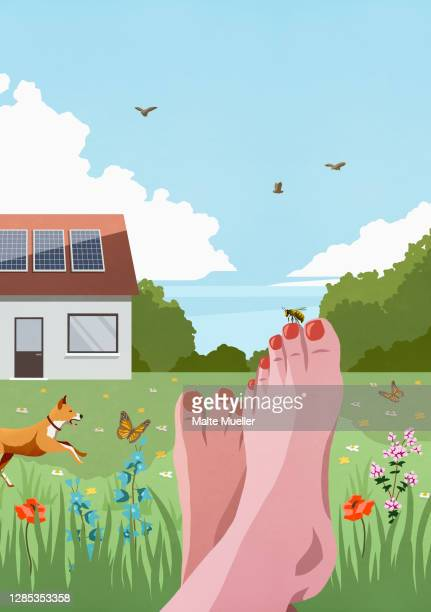 pov carefree barefoot woman relaxing in idyllic sunny spring garden - idylle stock-grafiken, -clipart, -cartoons und -symbole