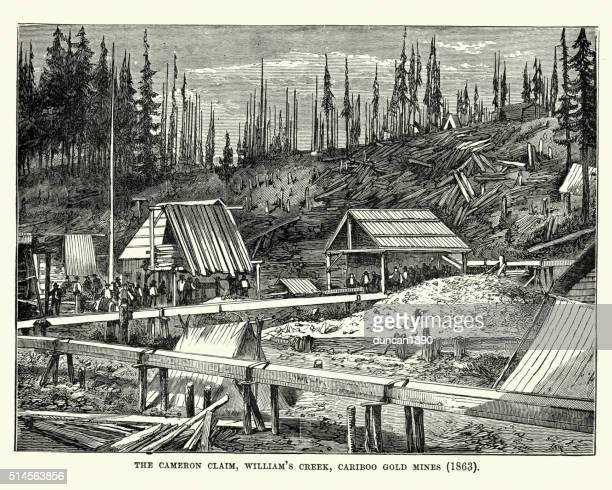 cariboo gold mine, british columbia, 1863 - gold rush stock illustrations